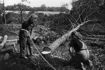 Land Girls with Logs