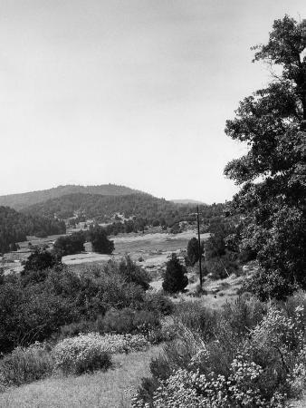 Palomar State Park