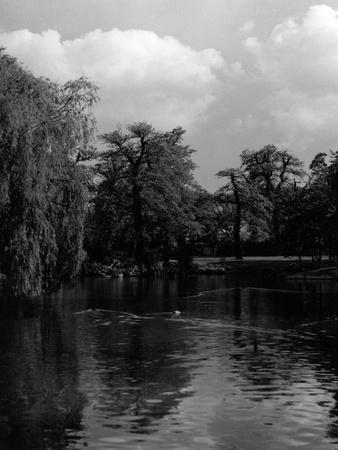 Greenwich Park Lake
