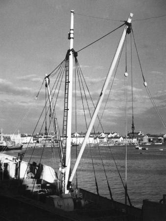 Teignmouth Quay