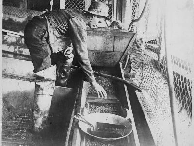 Panning Alluvial Gold