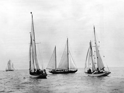 Bemuda Yachting Race
