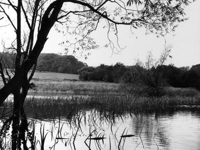 Highgate Pond