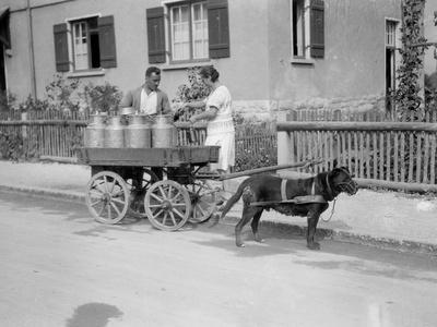 Black Forest Milk Cart