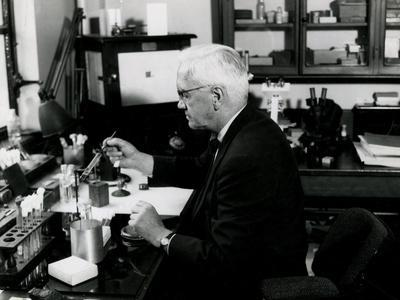 Fleming in His Lab 1952