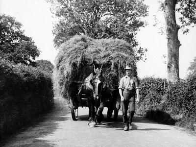 Dorset Hay Wain