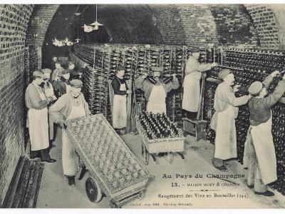 Storing Bottles at Moet Et Chandon