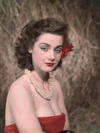 Hibiscus Girl 1950S 3, 4