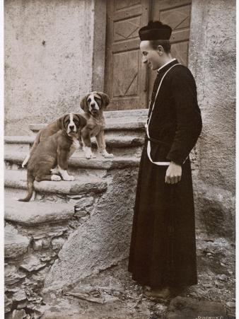 St Bernard Prior and Dogs