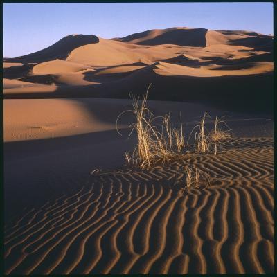 Desert Landscape at Merzouga, Morocco, North Africa