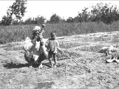 Father and Child in a Field, India