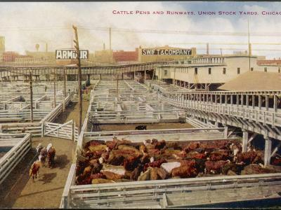 Chicago Stockyards