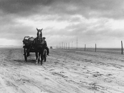 Horse and Cart on Sands