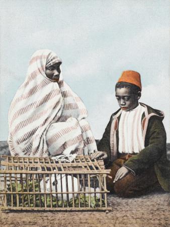 Rabbit Seller - Constantinople