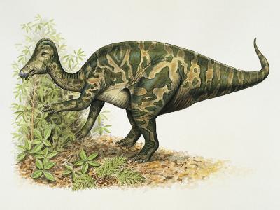 Dinosaur Eating a Leaf