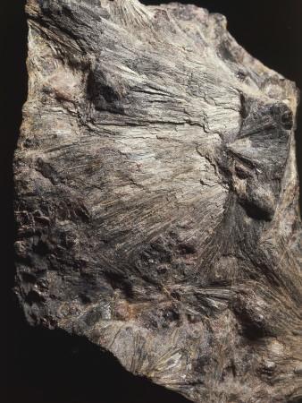 Close-Up of Cummingtonite