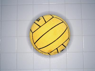 Water Polo Ball on Tile, Overhead View