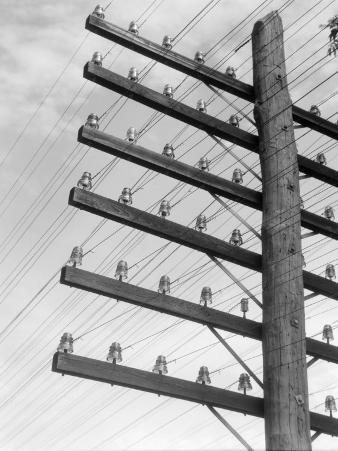 Closeup of Telephone Pole With 6 Levels of Wires