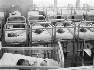 Newborn Baby Cribs in Hospital Nursery