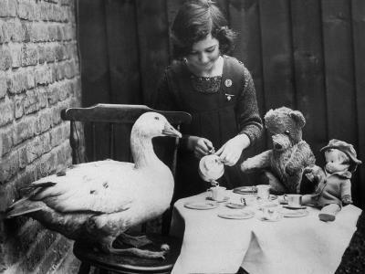Lucky Goose