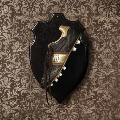 Football Boot Hanging as a Trophy on a Wall