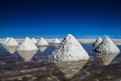 SALT Harvest Bolivia