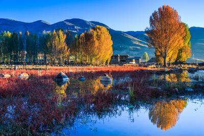 Autumn Scenery, Daocheng, Sichuan China