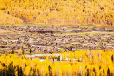 Village Embraced by Autumn Forest
