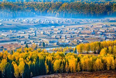 Autumn Scenery, Hemu Village, Xinjiang China