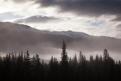 Misty Conditions over the Landscape and Forest, Jasper National Park, Alberta, Canada