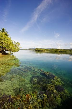 Shallow Sea with Coral, Islands and Sky