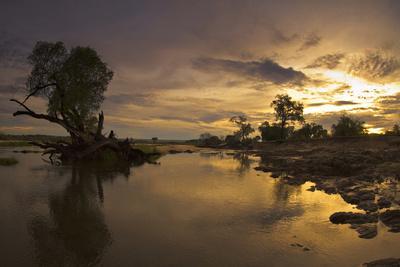 Sunrise, Zambezi National Park, Zambia