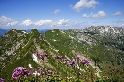 Allgau Alps with Nebelhorn, Oberstdorf, Bavaria