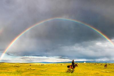 Rainbow & Rider