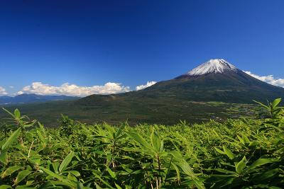 A Fine View of Mount Fuji from Mount Ryugatake