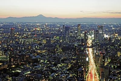 View over Tokyo to Mount Fuji at Dusk