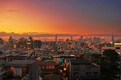 Tokyo Sunset, Harajuku
