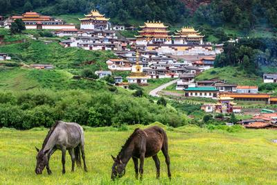 Langmu Monastery, Gansu, China