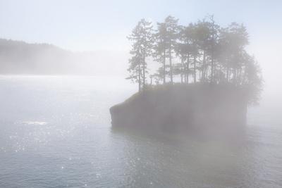 Usa, Washington State, Salt Creek County Park, Tongue Point