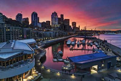 Winter's Morning Palette Seattle