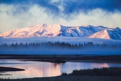 Mellow Misty Morning at Continental Divide, Yellowstone National Park, Wyoming