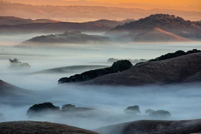 Light Color and Mist, Petaluma Hills, Sonoma County, San Francisco Bay Area