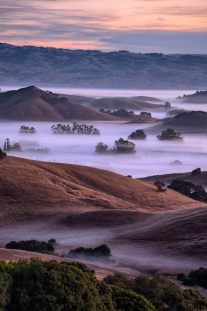 Magical Country Hills and Fog, Petaluma, Sonoma, Bay Area