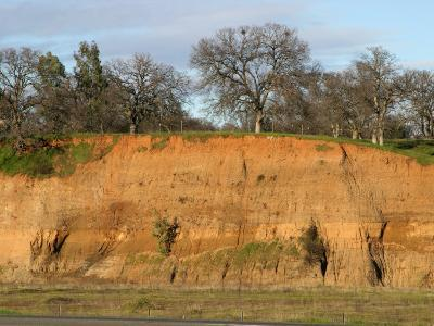 Soil Developed on River Deposits. Sacramento Valley, California, USA