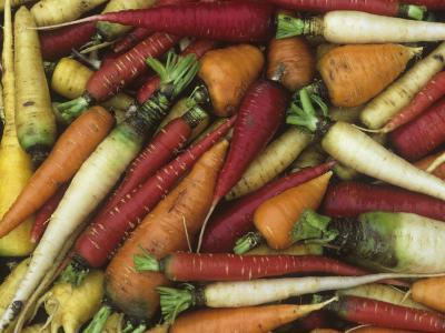 Genetic Variation and Diversity in Carrots, Daucus Carota