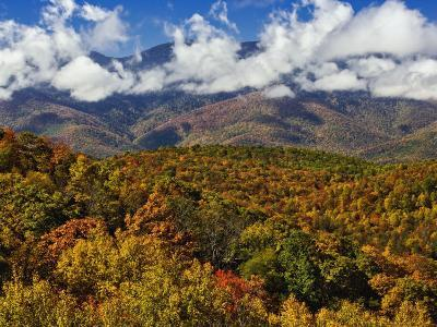 Autumn View of the Southern Appalachian Mountains from the Blue Ridge Parkway, North Carolina, USA