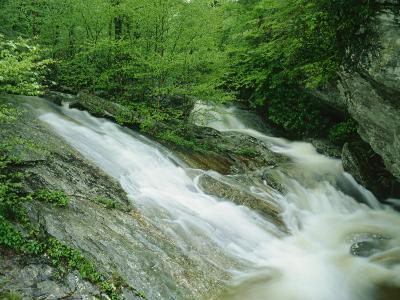 Wilson Creek, Pisgah National Forest, North Carolina, USA