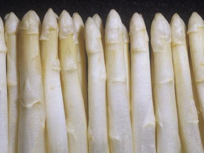 White Asparagus Spargel Variety That Contains No Chlorophyll (Asparagus Officinalis)