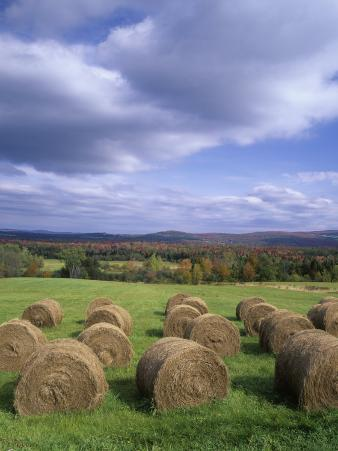 Hay Bales and Distant Autumn Colors, Near Westmore, Vermont, USA