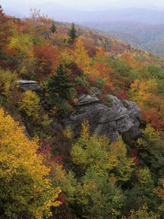 Rocky Outcrop and Autumn Colors Along the Blue Ridge National Parkway, Appalachian Mountains